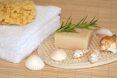 Natural Skincare Products Royalty Free Stock Photo