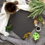 Natural slate slab surrounded by herbs, alchemy appliances, potions and ingredients lies on a table. fabric linen and knitted. Around. Halloween occultism stock photo