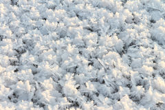 Natural snow background on an ice surface on the frozen river Stock Image