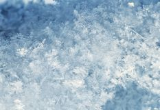 Natural snow background from many crystals of snowflakes of various shapes and texture shimmer in the sun on a clear winter day. Snow background from many stock photos