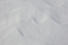 Natural snow background. Royalty Free Stock Image