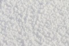 Natural snow background in the winter Royalty Free Stock Image