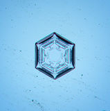 Natural snowflake macro Stock Image