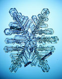 Natural snowflake macro naturals Stock Photos
