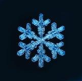 Natural snowflake macro naturals Stock Image