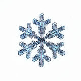 Natural snowflake macro naturals Stock Images