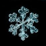 Natural snowflake macro naturals Royalty Free Stock Images