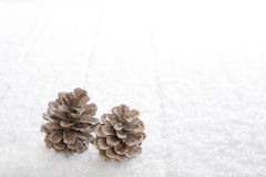 Natural snowy white background with fir cone for christmas decor Royalty Free Stock Images