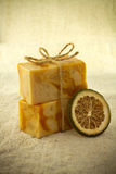 Natural soap. Stock Images