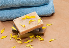 Natural soap Royalty Free Stock Photo