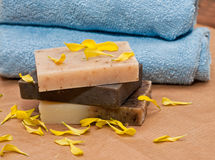 Natural soap Stock Image