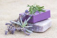 Natural soap with herbs Royalty Free Stock Photography