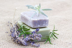 Natural soap with herbs Royalty Free Stock Image