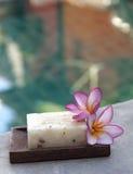 Natural soap at pool vertical Stock Photos