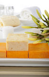 Natural soap for spa Stock Images