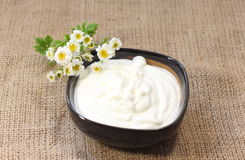 Natural sour cream. Sour cream natural ecologically pure fresh product stock image