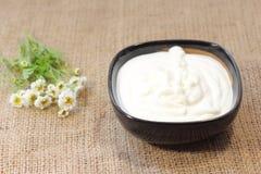 Natural sour cream Stock Photos