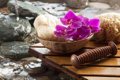 Natural source of beauty. Pampering elements for hydration and peeling Stock Photos
