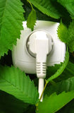 Natural source of energy. White outlet on among green leaves royalty free stock photography