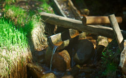 Natural source of mineral curative water. Royalty Free Stock Images