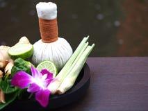 Natural Spa συστατικά για την εναλλακτική ιατρική και ταϊλανδικό θέμα SPA χαλάρωσης με το Si Στοκ Εικόνες
