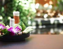 Natural Spa συστατικά για την εναλλακτική ιατρική και ταϊλανδικό θέμα SPA χαλάρωσης με το Si Στοκ Φωτογραφίες