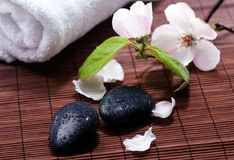 Natural spa Royalty Free Stock Images