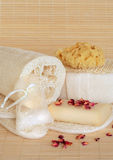 Natural Spa Beauty Products Stock Images