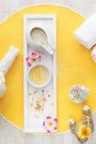 Natural spa behandeling met ingrediënten royalty-vrije stock afbeelding