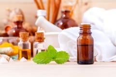 Natural Spa Ingrediënten Aromatherapy en Natural Spa thema stock foto