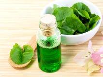 Natural Spa Ingredients . Royalty Free Stock Image