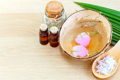 Natural Spa Ingredients . Stock Photography