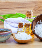 Natural Spa Ingredients . Stock Images