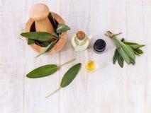 Natural Spa Ingredients Royalty Free Stock Image
