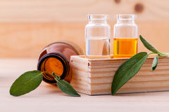 Natural Spa Ingredients sage essential oil Stock Photography