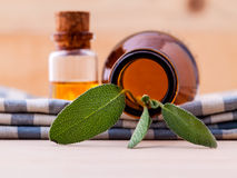Natural Spa Ingredients sage essential oil Stock Photo