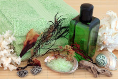 Natural Spa Products Stock Image
