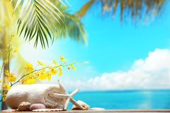 Natural spa resort. Beach items on table,Natural spa resort Royalty Free Stock Image