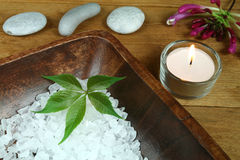 Natural spa therapy. Spa therapy with nature - green leaf in salt crystals Royalty Free Stock Photography