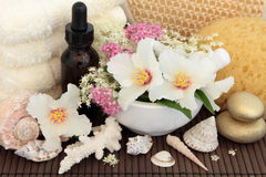 Natural Spa Treatment Stock Images