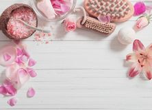 The Natural Spa Treatment Royalty Free Stock Images