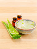 Natural Spas Ingredients for skin care. Stock Photography