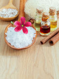 Natural Spas Ingredients for skin care. Royalty Free Stock Photos