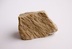 Natural specimen of foraminiferal ooze limestone - organogenic sedimentary rock royalty free stock images