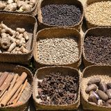 Natural spice in local market, Bali, Indonesia. Black and white pepper, ginger, nutmeg, cinnamon sticks, star anise, dry cloves Stock Photography