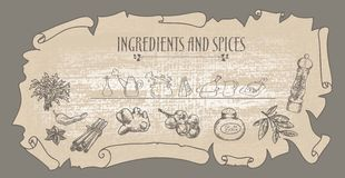 Natural spices Stock Image