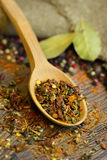 Natural spices in wooden spoon Stock Photography
