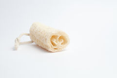 Natural sponge Stock Photography