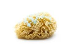 Natural sponge. Shower gel on natural sponge isolated on white background Royalty Free Stock Images