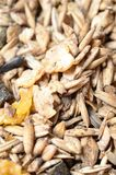 Natural sportive  muesli with oats. for horse.macro Stock Photo